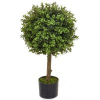 40cm Topiary Buxus Ball